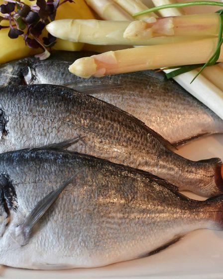 manger du poisson tous les jours